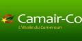 喀麦隆航空logo